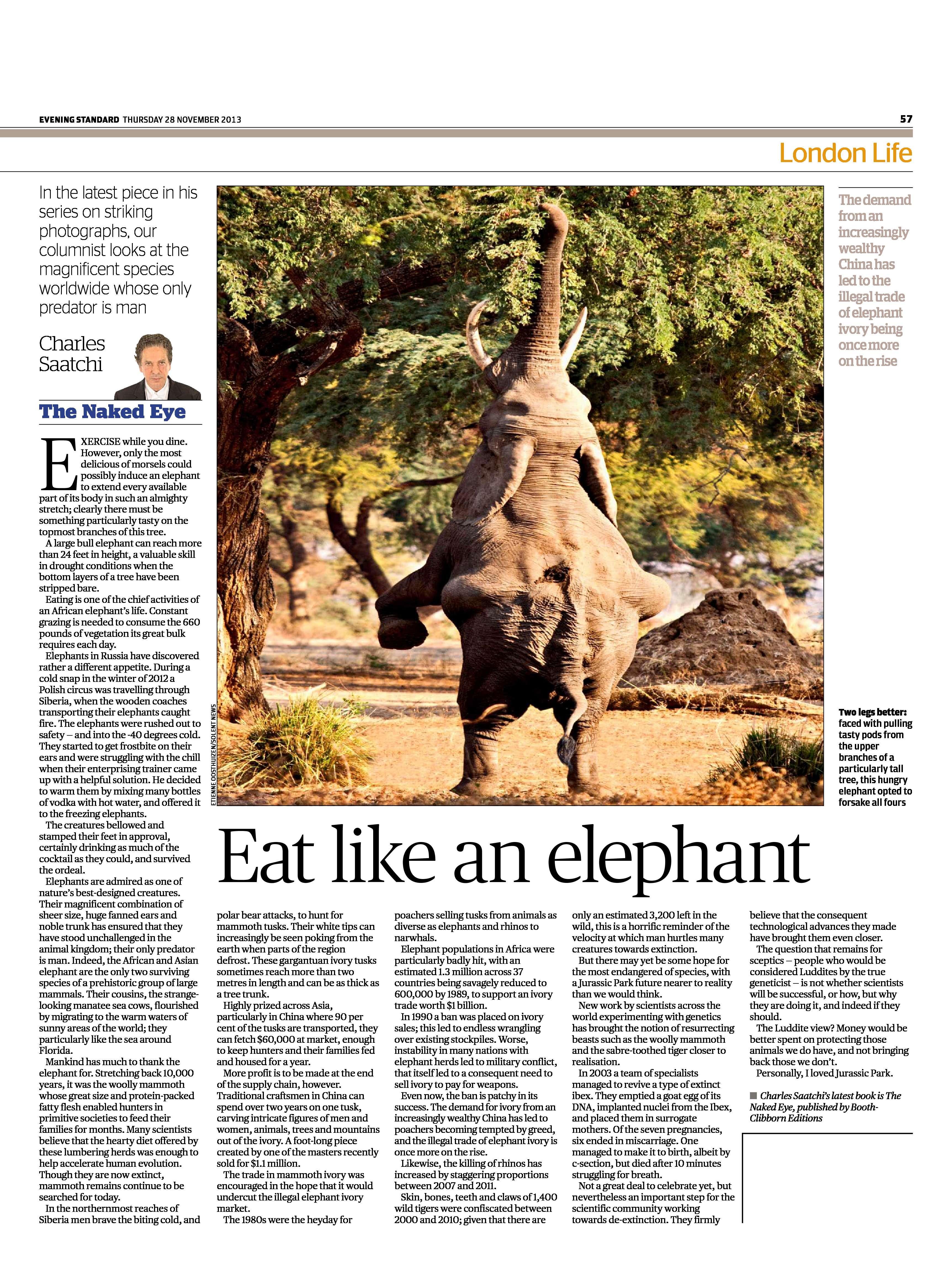 Eat like an elephant